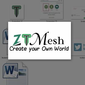 ZT Mesh Official
