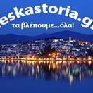 Des Kastoria