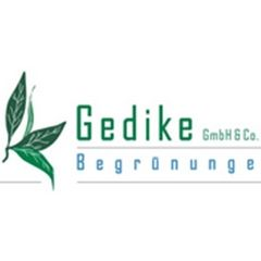 Gedike GmbH & Co KG Begrünungen