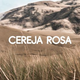 Cereja Rosa