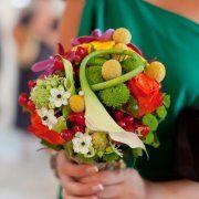 Damaris Flowers