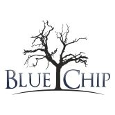 Blue Chip Game Lodge
