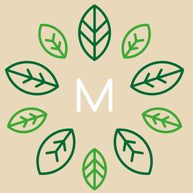 Mandragora design