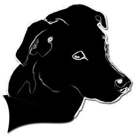 Adiestrador Canino Pecolo