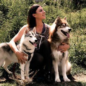 The Pawsome Tyroleans |Hundeblog aus Österreich