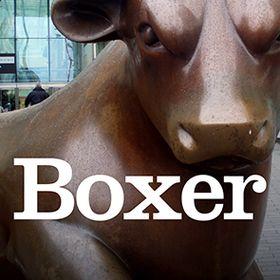 Boxer Design
