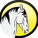 Equus Imports Ltd.