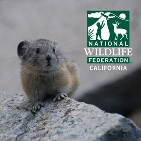 National Wildlife Federation California