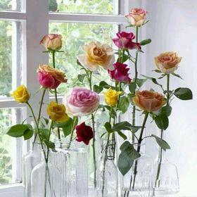 """Pansies Floral Printemps Bienvenue Maison Drapeau Décoratif Everyday Fleur 28/"""" X 40/"""""""