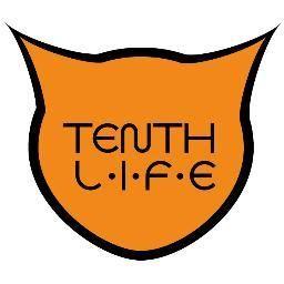 Tenth Life Cat Rescue Tenthlifecats On Pinterest