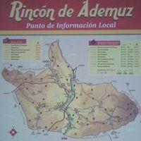 Adelina Anton
