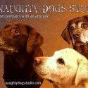 Naughty Dogs Studio