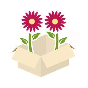 BloomsByTheBox.com