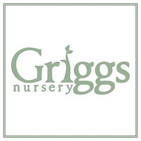 Griggs Nursery