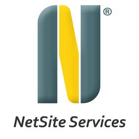 NetSite Services