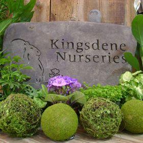 Kingsdene Nurseries