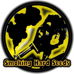 Smoking Hard Seeds Semillas De Cannabis
