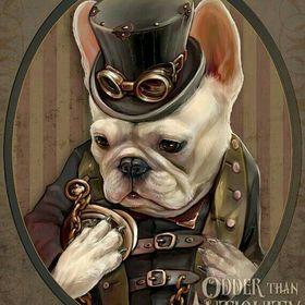 Donbulldog
