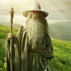 Gandalf The Lord Of The Seaside Alpacas