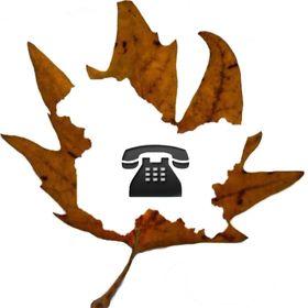 Dial Kashmir