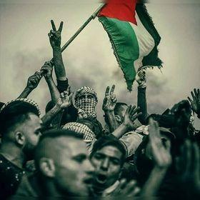 فلسطينية..ولي الفخر🇵🇸