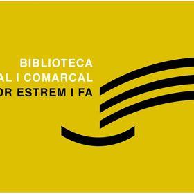 Biblioteca Pública Salvador Estrem i Fa