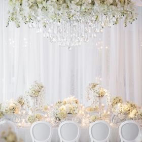 Anne Anderson Events