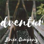 Brice Company