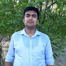 M Alauddin Hasib