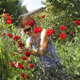 De Plante Tante