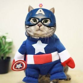 Captain_AmeriCAT
