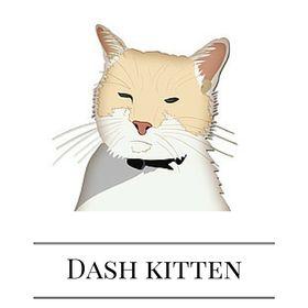 DashKitten.com