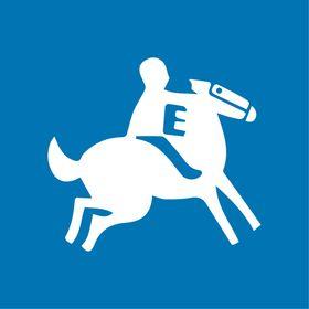 Ponys Sabateries
