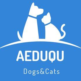 aeduqu.com We Love Dogs Cats