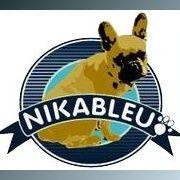 NikaBleu Marketing
