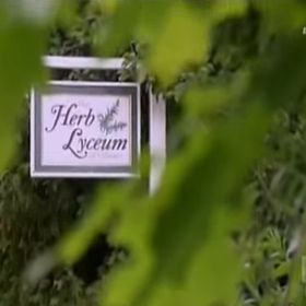 The Herb Lyceum
