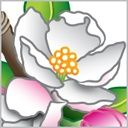 Blossom & Twig Artisan Soaps