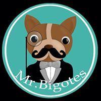 Mrbigotes Cali