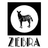 zebra buty