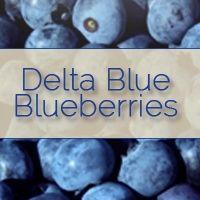 Delta Blue Blueberries
