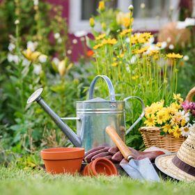 Návody postupy, recepty a rady nie len do záhrady