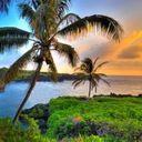 Hawaiian Beach Rentals