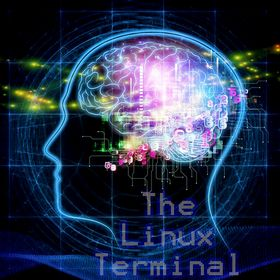 The Linux Terminal
