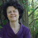Manon van den Broek