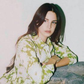 Angelina jolie naked xxx
