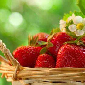 mayoberry