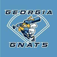 GA Gnats