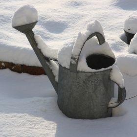 Lydie une fée d' hiver