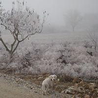 Nieves Blanco Vega