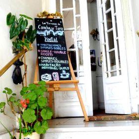 HOSTAL Las Terrazas de Concha y Toro Hostal y Cafetería